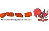 Gymn. Salzhausen - FUGS